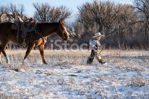 Young child in cowboy hat and leather chaps holds the reins to lead a brown quarter horse across a snowy filed on a sunny winter day, Livingston, Montana, USA