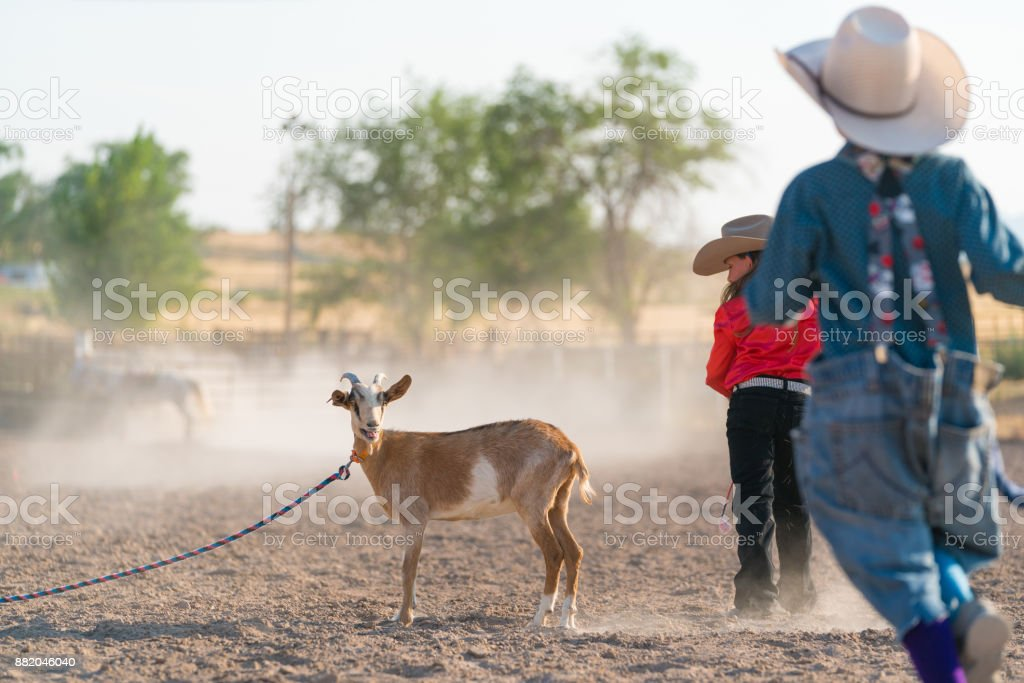 Young cowgirl and rodeo clown in a goat roping event stock photo