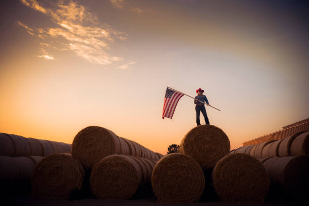 Young Cowgirl Stands On Top Of A Huge Pile Of Hay Bales At Sunset Holding The American Flag stock photo
