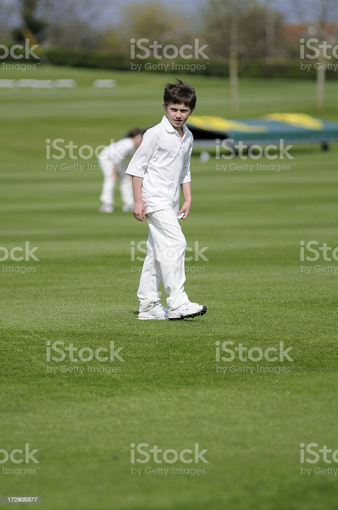 Young cricketer stock photo