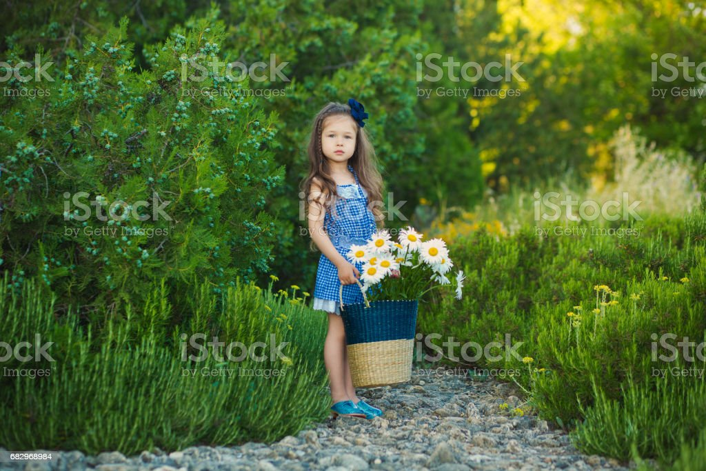 Young cute girl in jeans dress standing close to yellow flowers with basket full of chamomile royalty-free stock photo