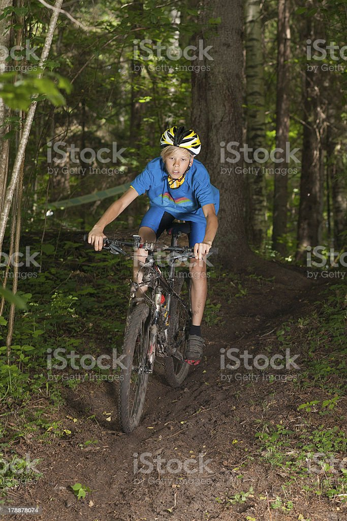 Young cyclist riding downhill in forest stock photo