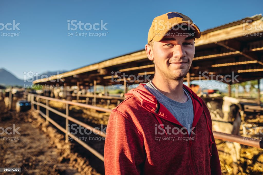Young dairy farmer stock photo