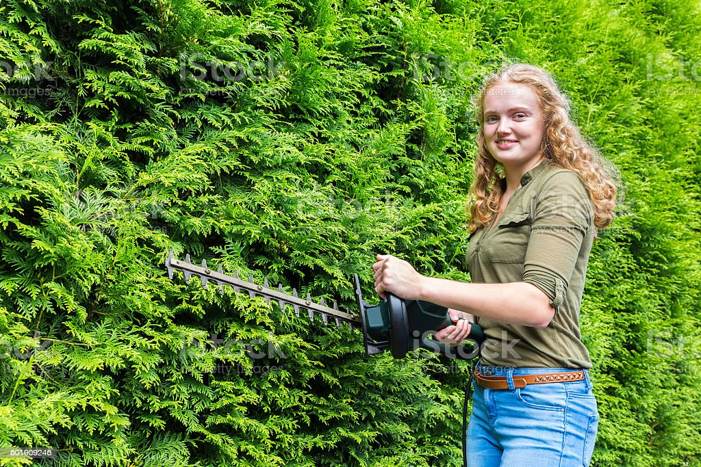 Young dutch woman holding hedge trimmer at conifers stock photo
