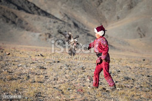 Young eagle hunters start training with falcons from early age. Series of a young boy catching his falcon mid-flight. Ulgii, Mongolia.