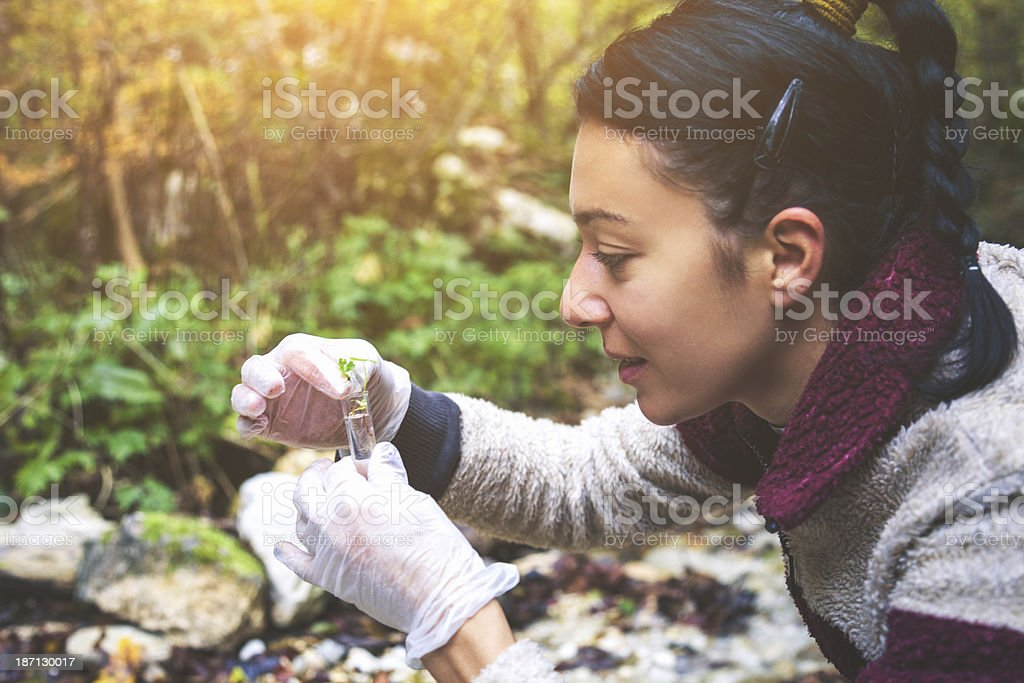 Young ecologist woman in the forest stock photo