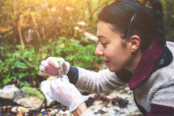 Young ecologist woman in the forest Young ecologist woman examines plants and water in the forest. specimen holder stock pictures, royalty-free photos & images