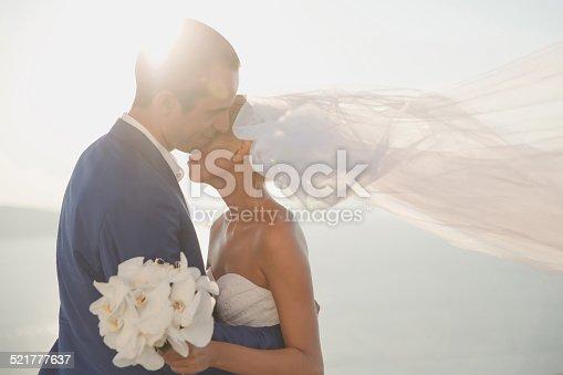674214372istockphoto Young elegant wedding couple 521777637