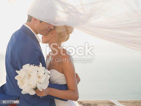 674214372istockphoto Young elegant wedding couple 521777639