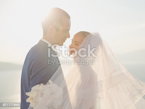674214372istockphoto Young elegant wedding couple 521777643