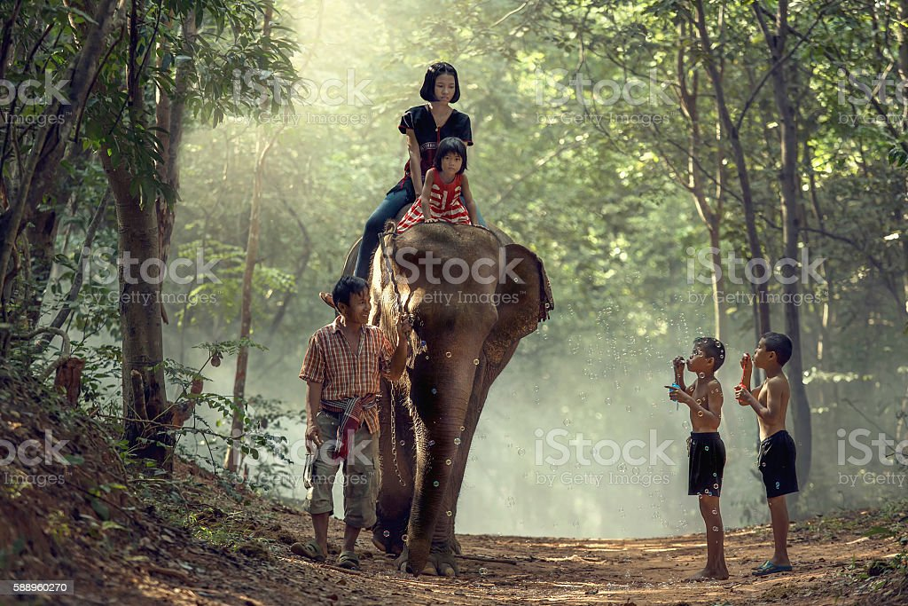 Young elephant with family mahout stock photo