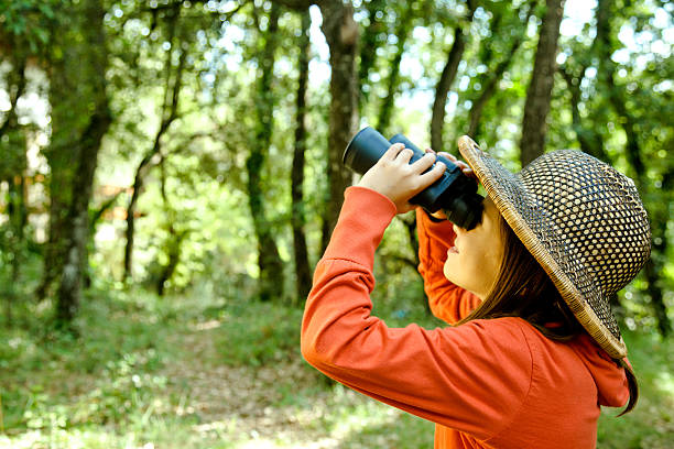 Young explorer girl bird-watching stock photo