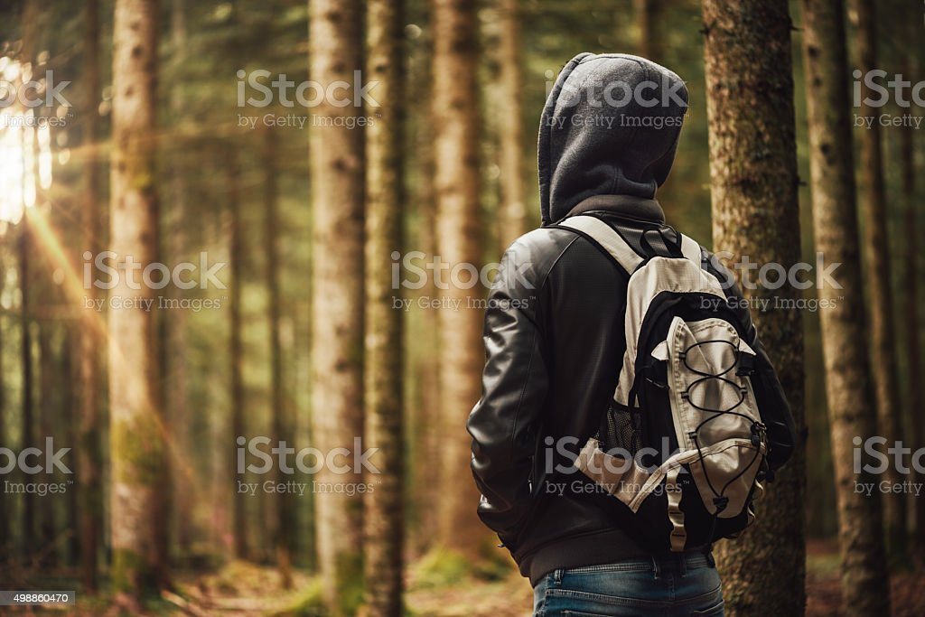 Young explorer in the woods stock photo