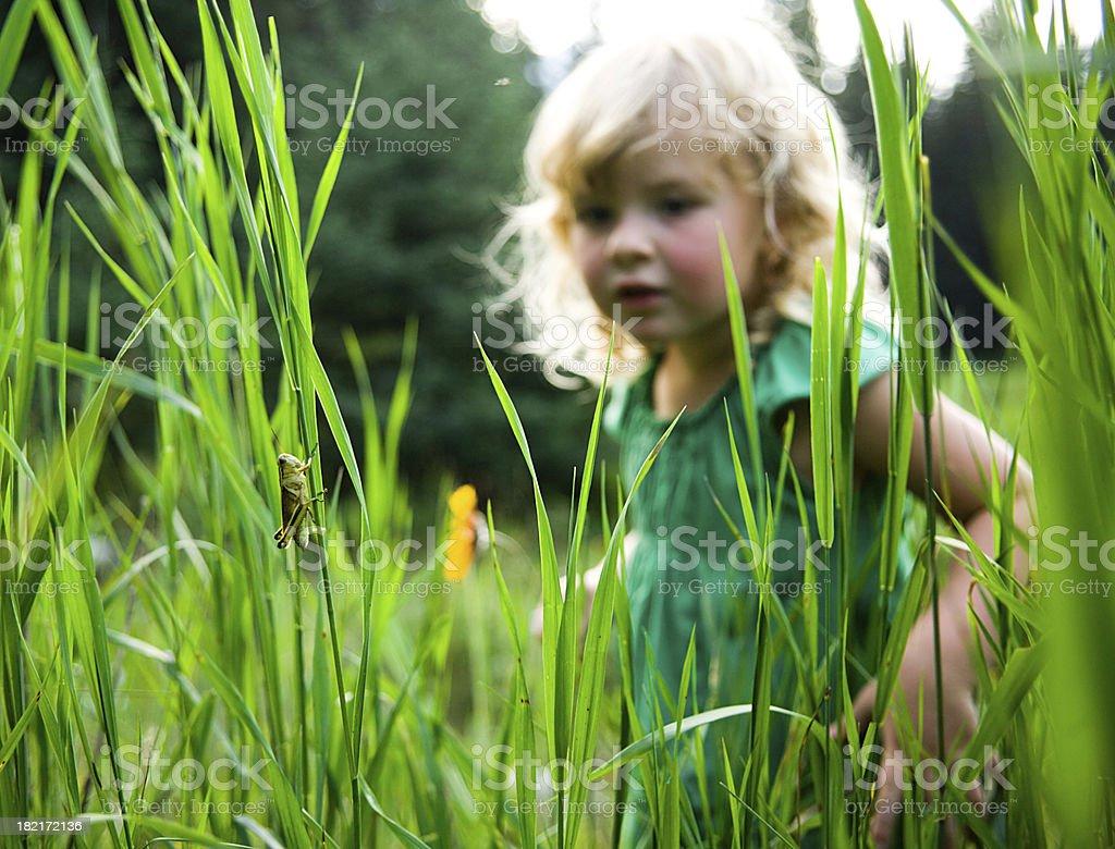 Young Explorer stock photo