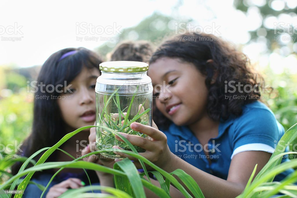 Young explorers stock photo