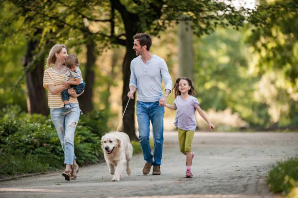 Junge Familie und ihr Golden Retriever im Frühlingstag im Park. – Foto