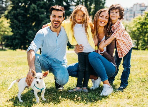 Young family with a dog stock photo