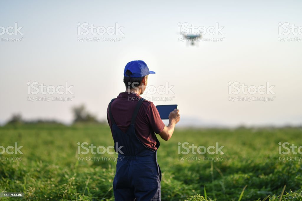 Young farmer flying a drone over a field stock photo