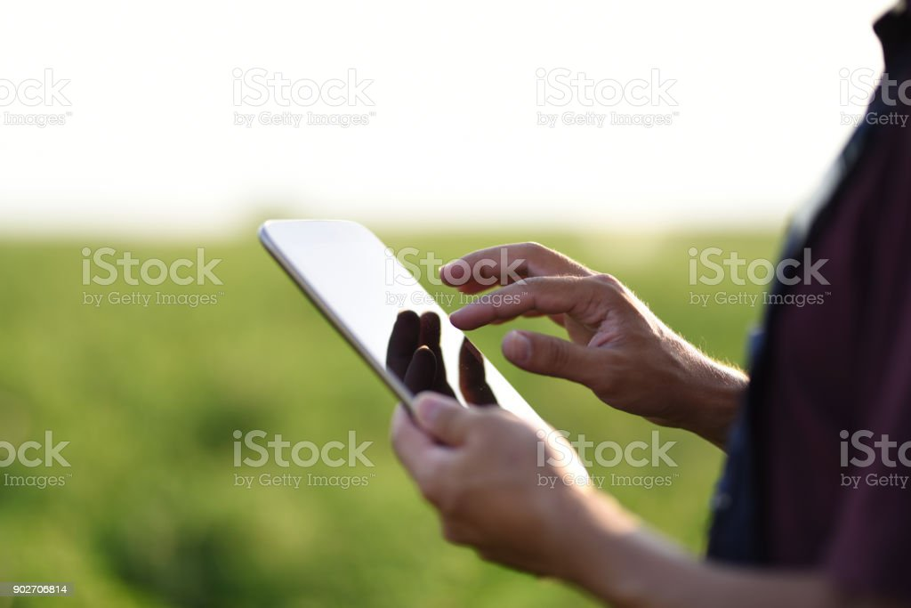 Young Farmer using a digital tablet stock photo