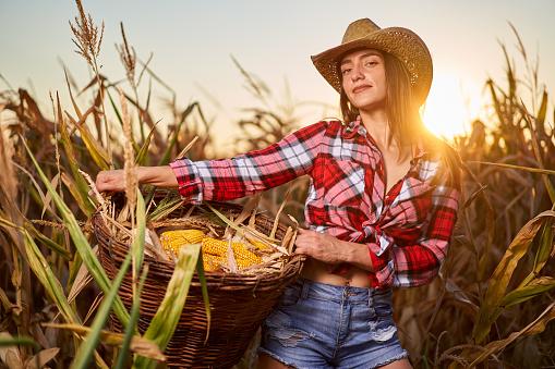 Questa immagine ha l'attributo alt vuoto; il nome del file è young-farmer-woman-harvesting-corn-picture-id1279393871