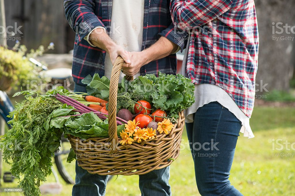 Young farmers holding big basket of Fresh Garden Produce stock photo