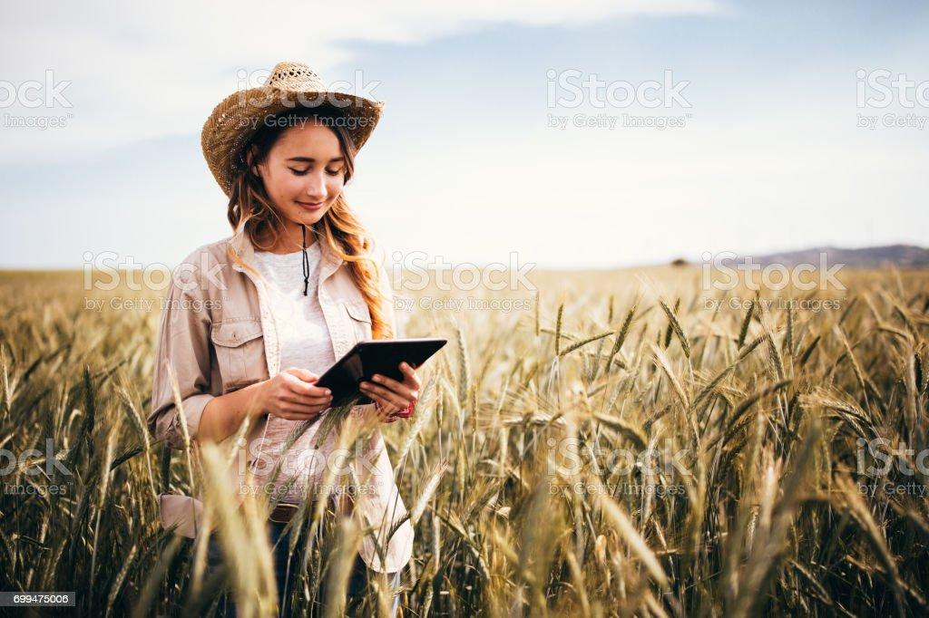 Científico joven mujer agricultura control de cultivos de trigo con tableta digital - foto de stock