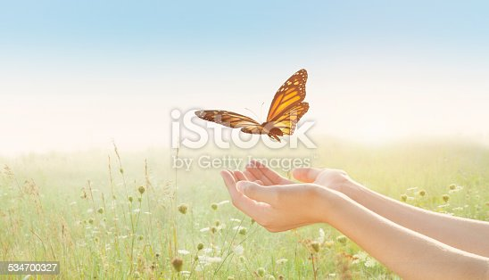 Young female with arms outstretched and open palms releasing a monarch butterfly in a sunlit field.
