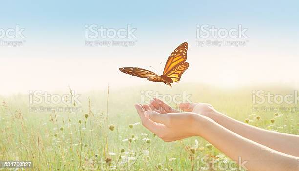 Young female arms outstretched open palms releasing butterfly in picture id534700327?b=1&k=6&m=534700327&s=612x612&h=k1p2tepbjpiwweglzk8wi9t57dfxyt66ugrhthubkis=