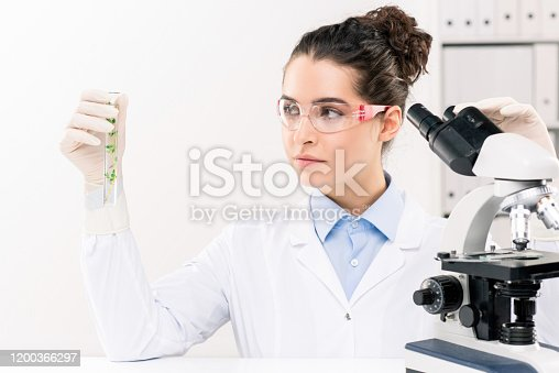 1147277006 istock photo Young female biologist looking at flask while studying green plant in laboratory 1200366297
