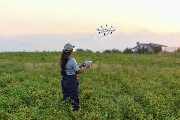jonge vrouwelijke boer spuiten haar gewassen met behulp van een drone - vanuit een drone gezien stockfoto's en -beelden