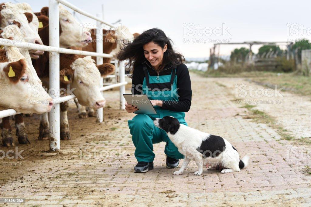 Jeune agricultrice avec vaches et son chien - Photo