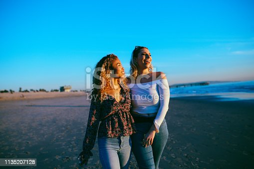 Vintage toned, warm colored portrait of a young mixed Latina woman with her female friend, watching the beautiful sunset on the Venice beach in Los Angeles, California. Friendship or couple concepts in the beautiful California sunset.