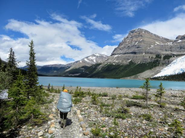 A young female hiker hiking along the Berg Lake Trail, in Mount Robson Provincial Park, British Columbia, Canada.  Mount Robson looms in the distance on a beautiful summer day with pure blue sky. stock photo