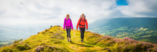 Young female hikers walking along heather mountain ridge summer panorama Young hikers walking along a picturesque mountain ridge of purple heather in the Brecon Beacons National Park, Wales, UK. brecon beacons stock pictures, royalty-free photos & images