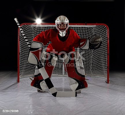 Young Female Ice Hockey Goalie Stock Photo More Pictures Of Adult