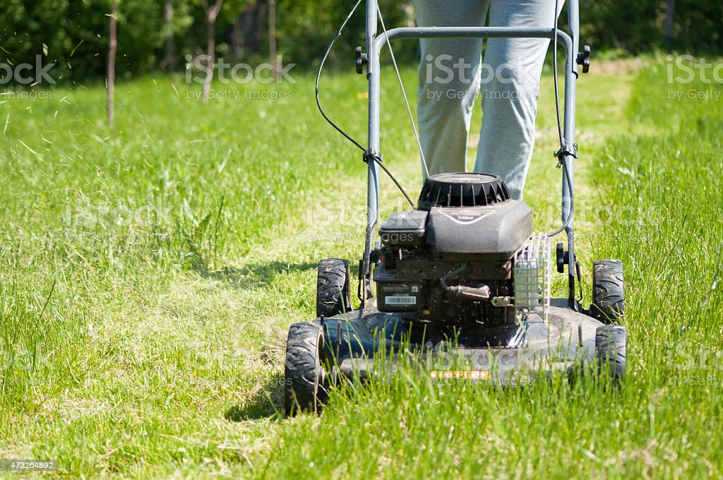 Young female in yard - pushing grass trimming lawnmower stock photo