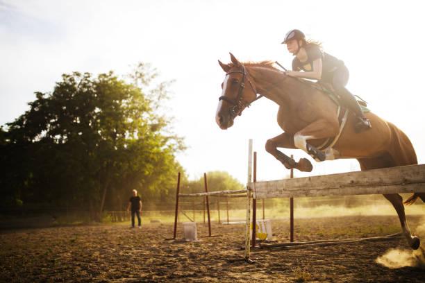unga kvinnliga jockey på hästen hoppar över hindret - hästhoppning bildbanksfoton och bilder