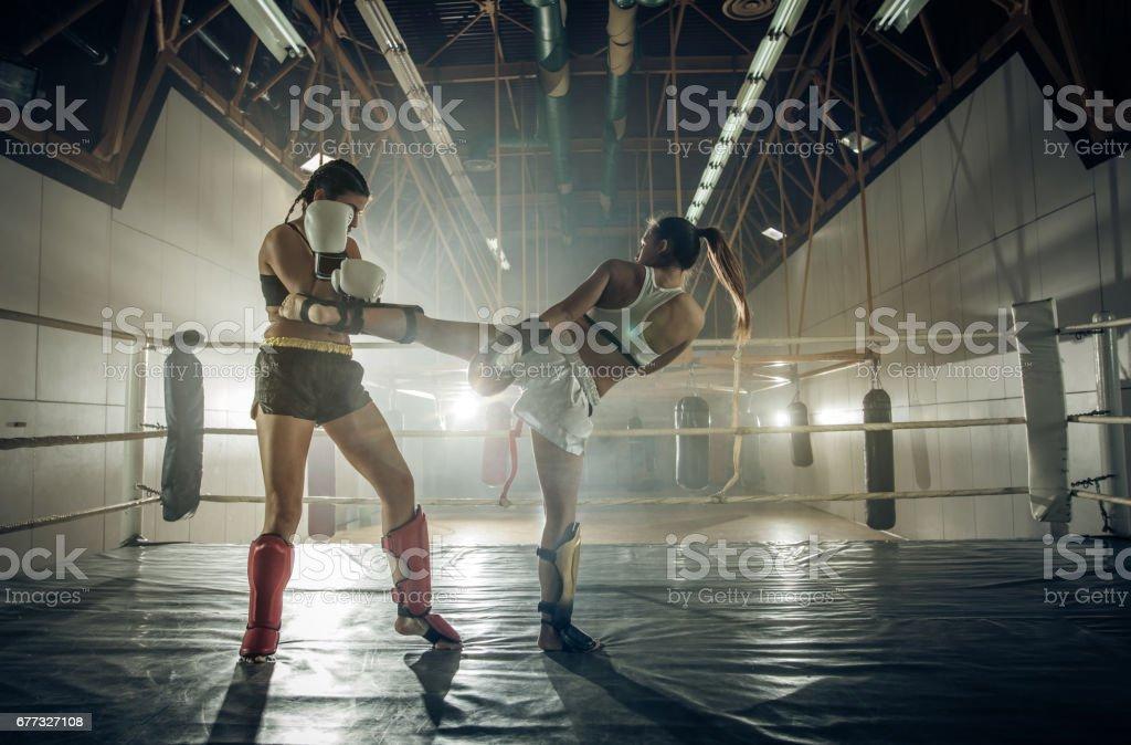 Chute de fêmeas jovens pugilistas lutar no ringue de boxe. - foto de acervo