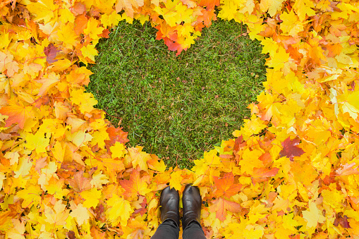 Young female legs in black boots standing on fallen leaves. Heart shape created from lush and colorful maple leaves. Fresh green grass in middle. Empty place for positive text, quote or sayings.
