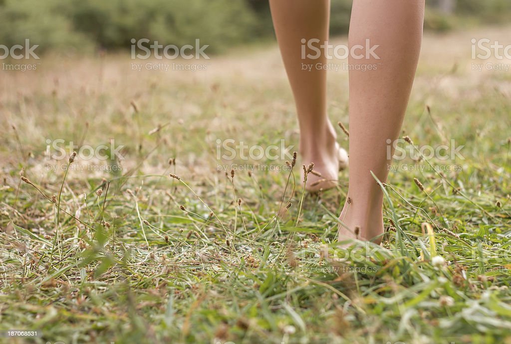 Young female legs walking on the grass stock photo