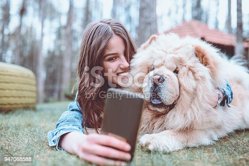 636418612 istock photo Young Female Making Selfie with her Chow Chow Dog in Park 947068588