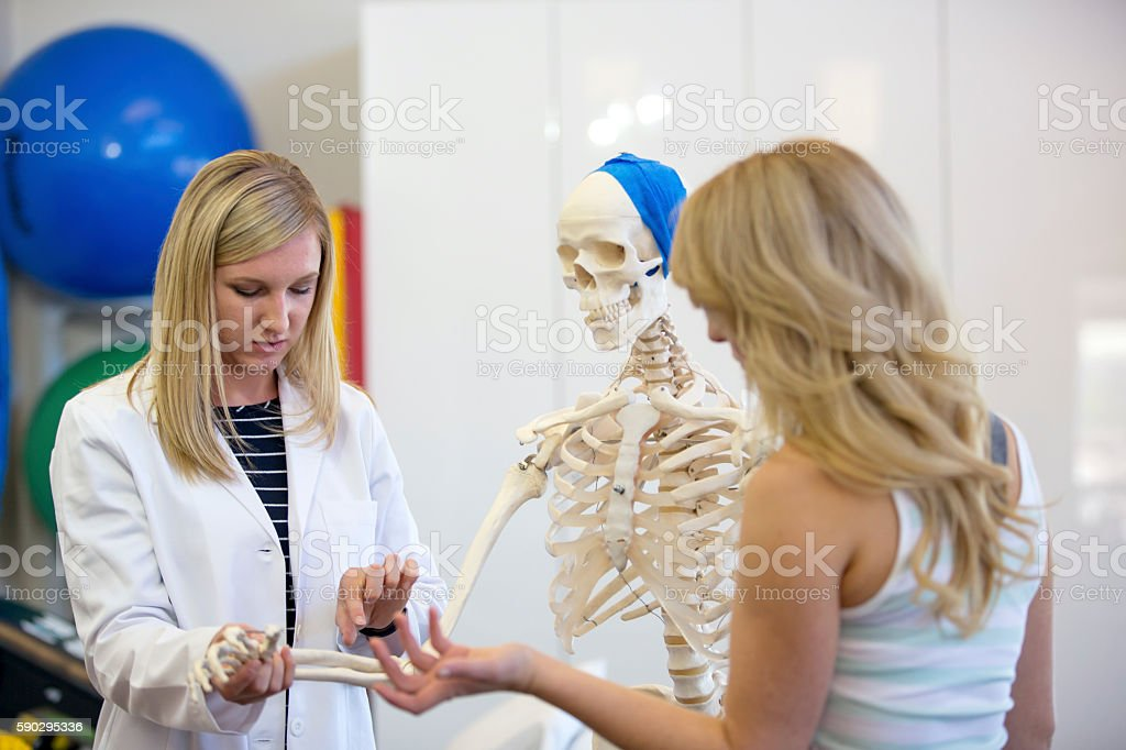 Young female physical therapist teaching a patient about bone structure royaltyfri bildbanksbilder