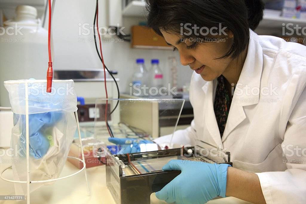 Young female researcher is preparing a DNA test royalty-free stock photo