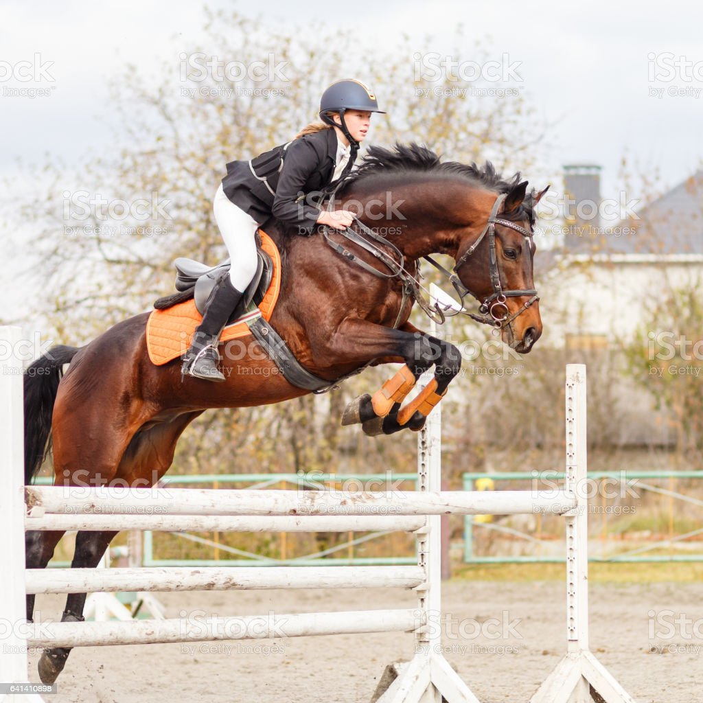 Young female rider on bay horse jump over hurdle stock photo