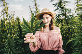 Young female scientist taking care for a medical marijuana cultivation