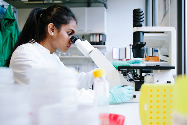 Young female scientist watching through microscope in laboratory stock photo