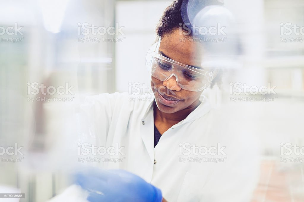 Young Female Scientist Working in The Laboratory stock photo
