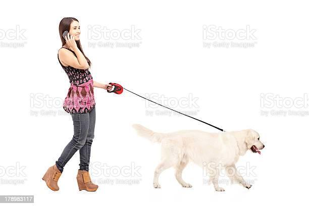 Young female walking her dog and talking on a phone picture id178983117?b=1&k=6&m=178983117&s=612x612&h=nx8ff jke44yuwbhbmjmz eao7wjpkmdlpomlnb5ovw=
