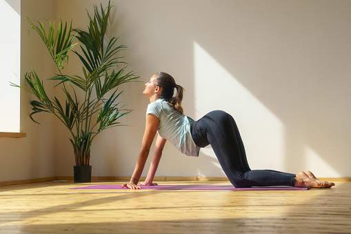Young Fit Woman Doing Stretching Exercise Stock Photo - Download Image Now
