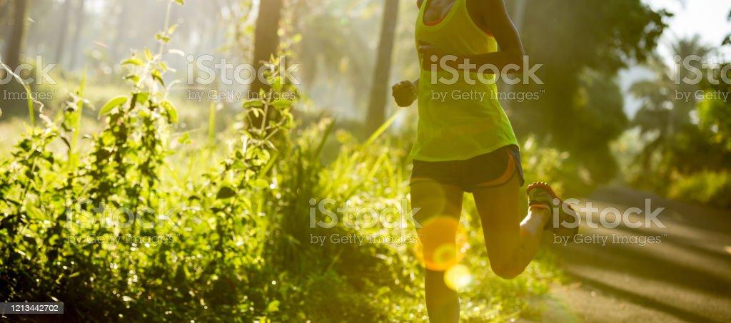 Junge Fitness-Frau läuft am Morgen tropischen Waldweg - Lizenzfrei Athlet Stock-Foto